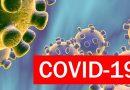 COVID-19: Portugal não regista óbitos, há mais 450 casos